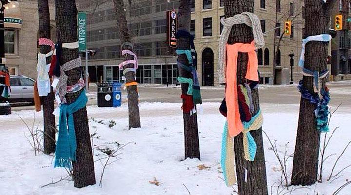 Если вы увидели шарф на дереве, не спешите искать его владельца! Вот что это значит