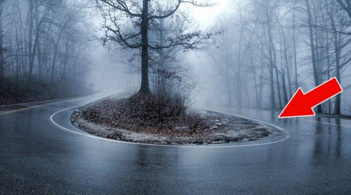 Если на дороге появилось ЭТО — немедленно и осторожно снижайте скорость!