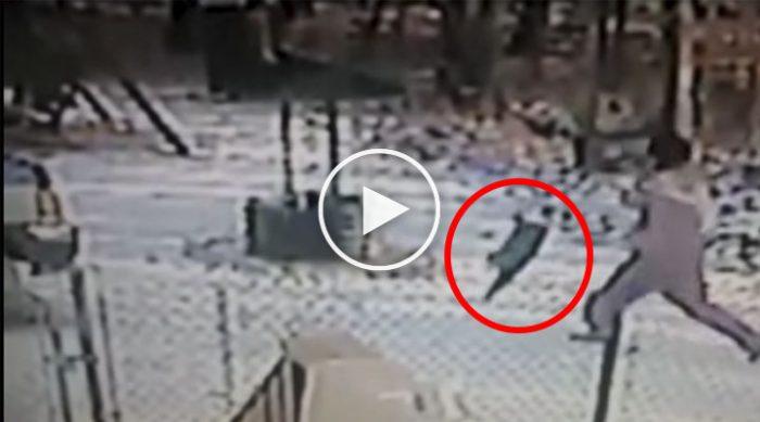 Девушка отгоняла кошку, бросая ей в морду снег…Вы только посмотрите что произошло дальше…
