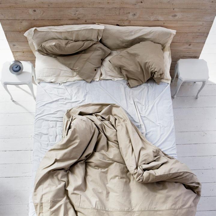Картинки по запросу размножаться в наших постелях