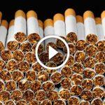 ШОК: из чего делают сигареты. Волосы встают дыбом!