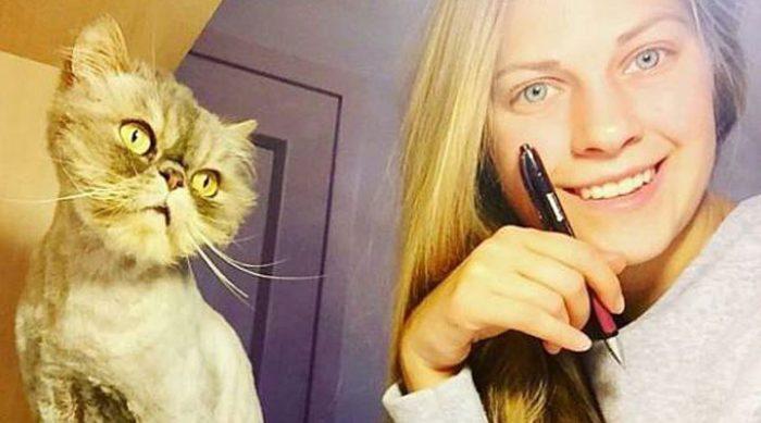 Она одна спасла 350 кошек! Фотографии бездомных малышей ДО и ПОСЛЕ встречи с новой хозяйкой…