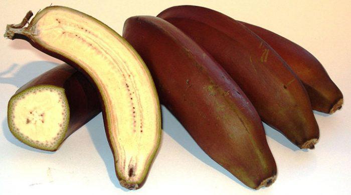 Почему  банан считается одним из самых грязных фруктов в мире…