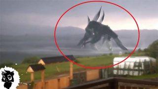 5 гигантских монстров, снятых на камеру