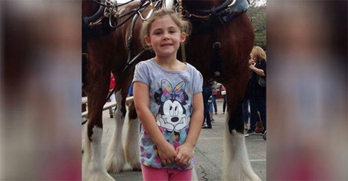 Дочка попросила отца сфотографировать ее с лошадкой. Когда он взглянул на фото – начал безудержно хохотать!