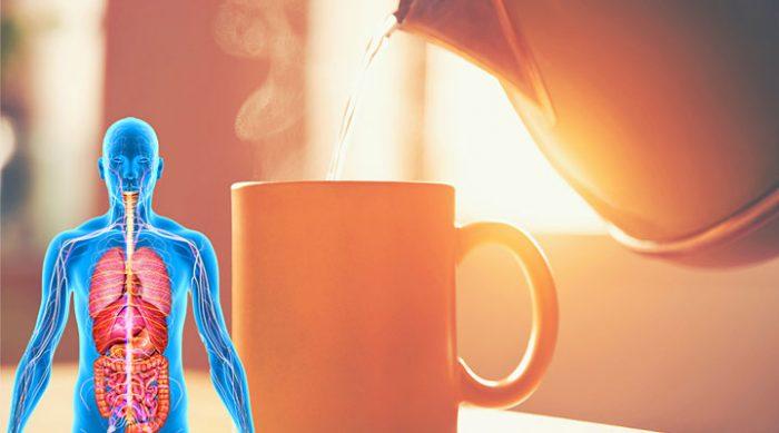 5 причин выпивать по утрам чашку теплой воды