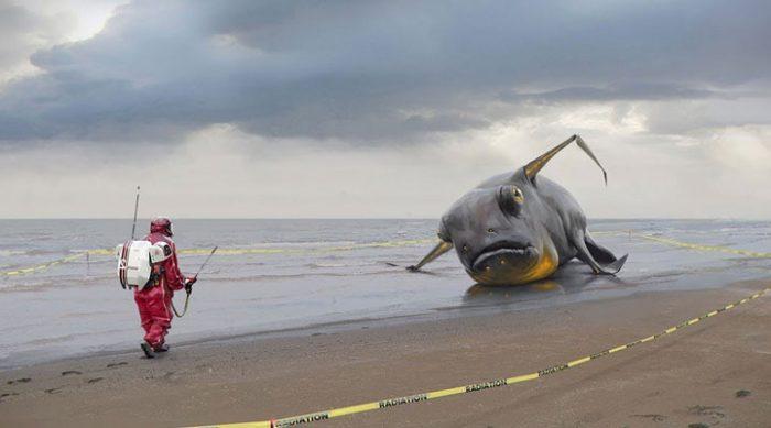 Эти люди, после жуткого цунами нашли предметы, происхождение которых…