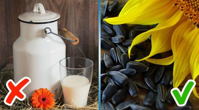 10 вкусных и полезных альтернатив для тех, кто не любит молочные продукты