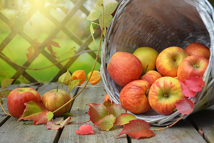 Что приготовить из яблок