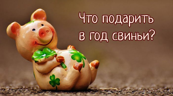 Что подарить в год свиньи? 10 идей новогодних подарков
