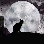 Хэллоуин: какого числа его празднуют и другие интересные факты о «Ночи всех святых»